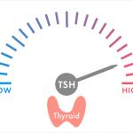 甲状腺ホルモン値は正常、甲状腺刺激ホルモン(TSH)が高値と診断されたら