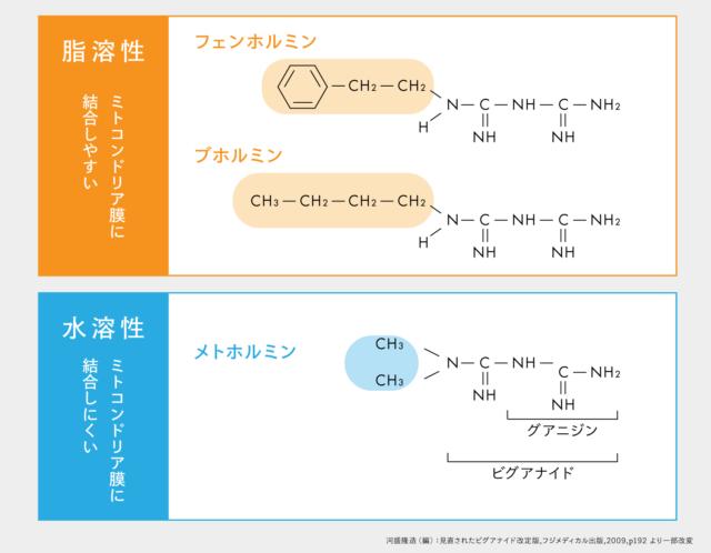ビグアナイド系薬剤の構造式の比較